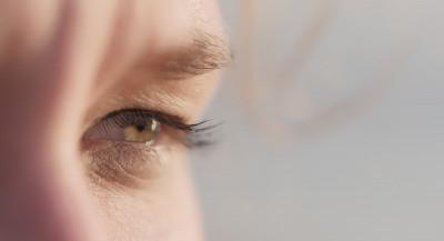 Leamus i øyet